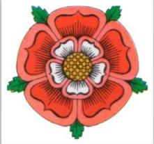 tudor-rose_colour