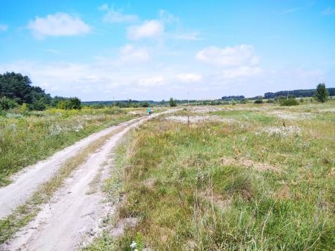 Дорога 12-59-02